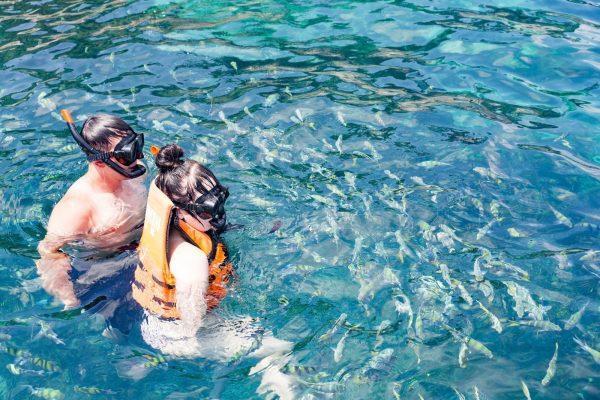 Незабываемый отдых в водах Сиамского залива