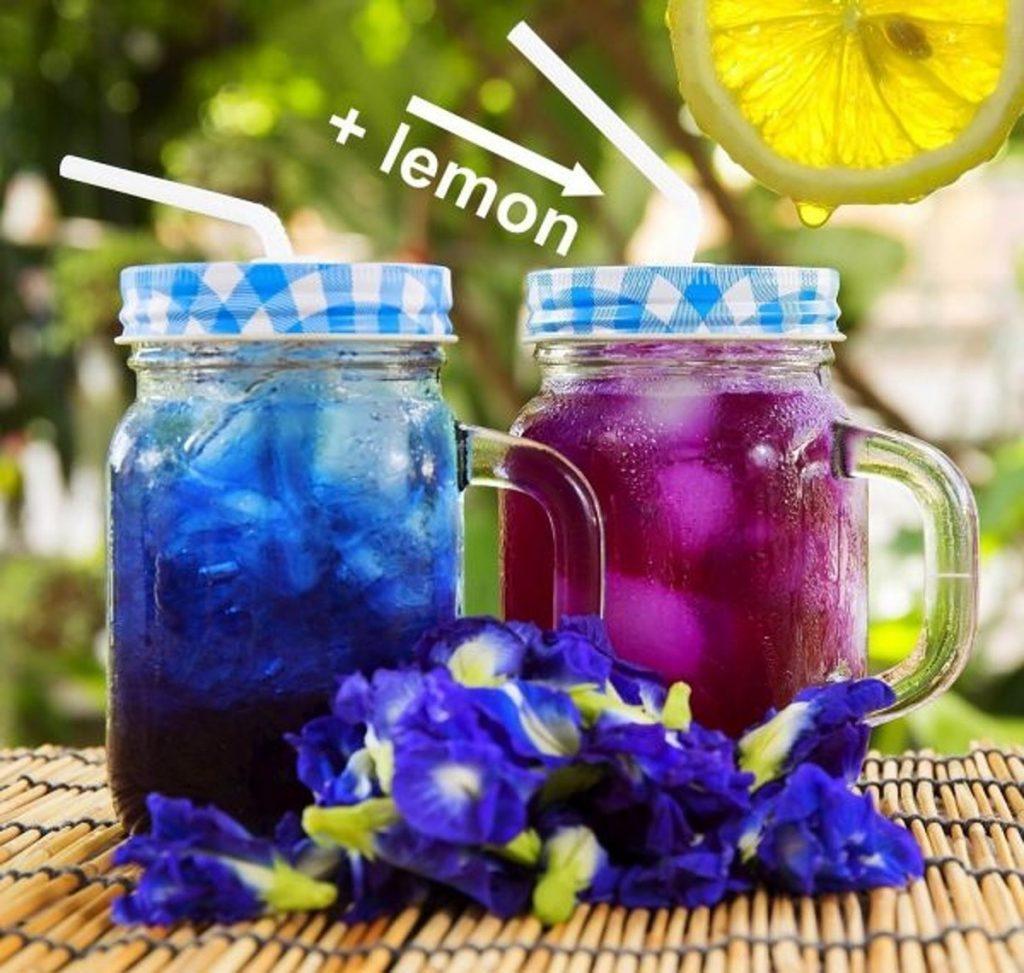 Капля лимона делает синий чай сиреневым