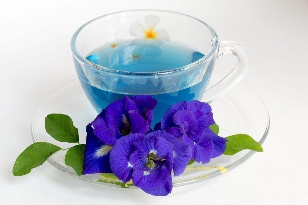 Обязательно обращайте внимание на противопоказания к Синему чаю