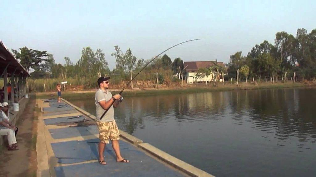 Рыбалка в рыбном парке в Джомтьене