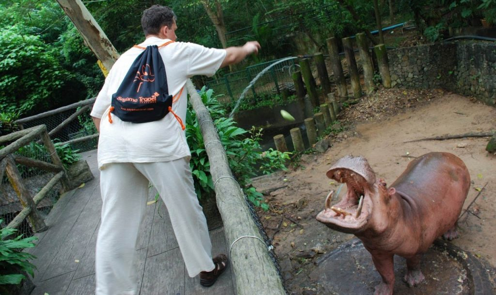 Интересная прогулка по зоопарку Кхао-Кхео в Паттайи