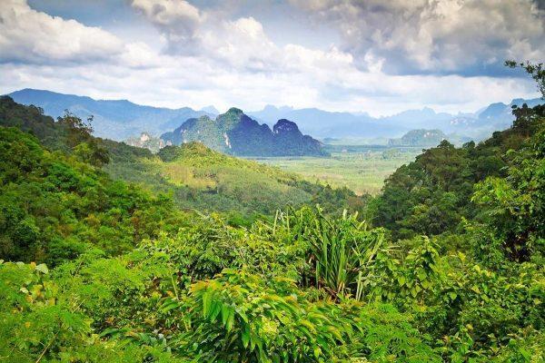 Красивый пейзаж Khao Lak National Park